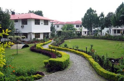 The Pestle Weed School Dehradun